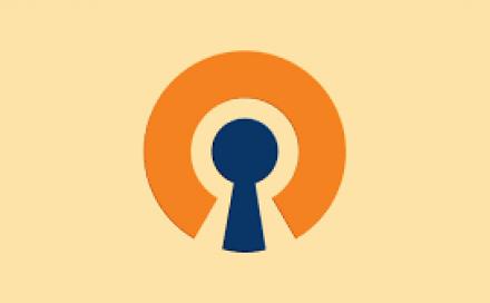The Best VPNs for OpenVPN